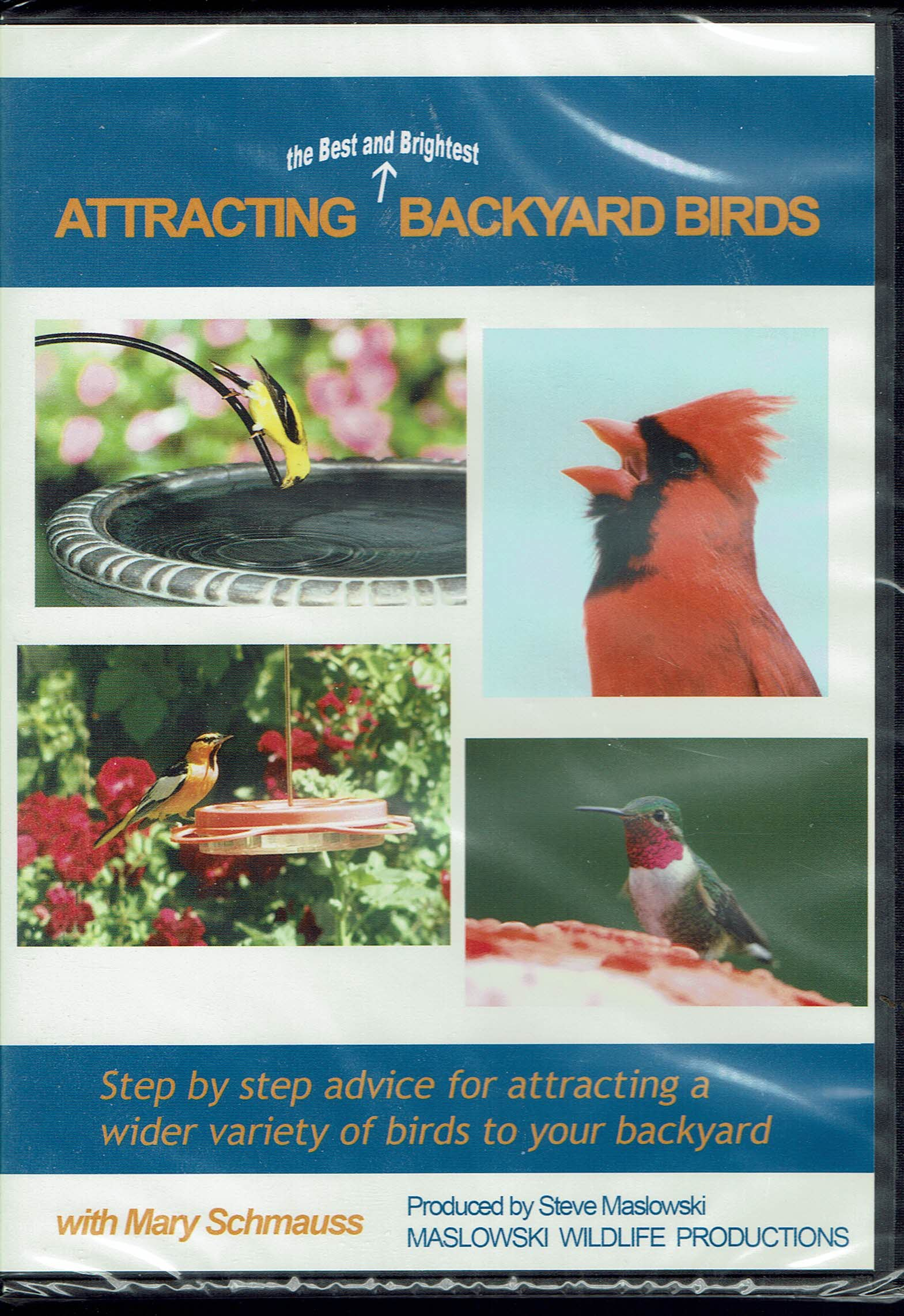 Image for Attracting the Best and Brightest Backyard Birds DVD